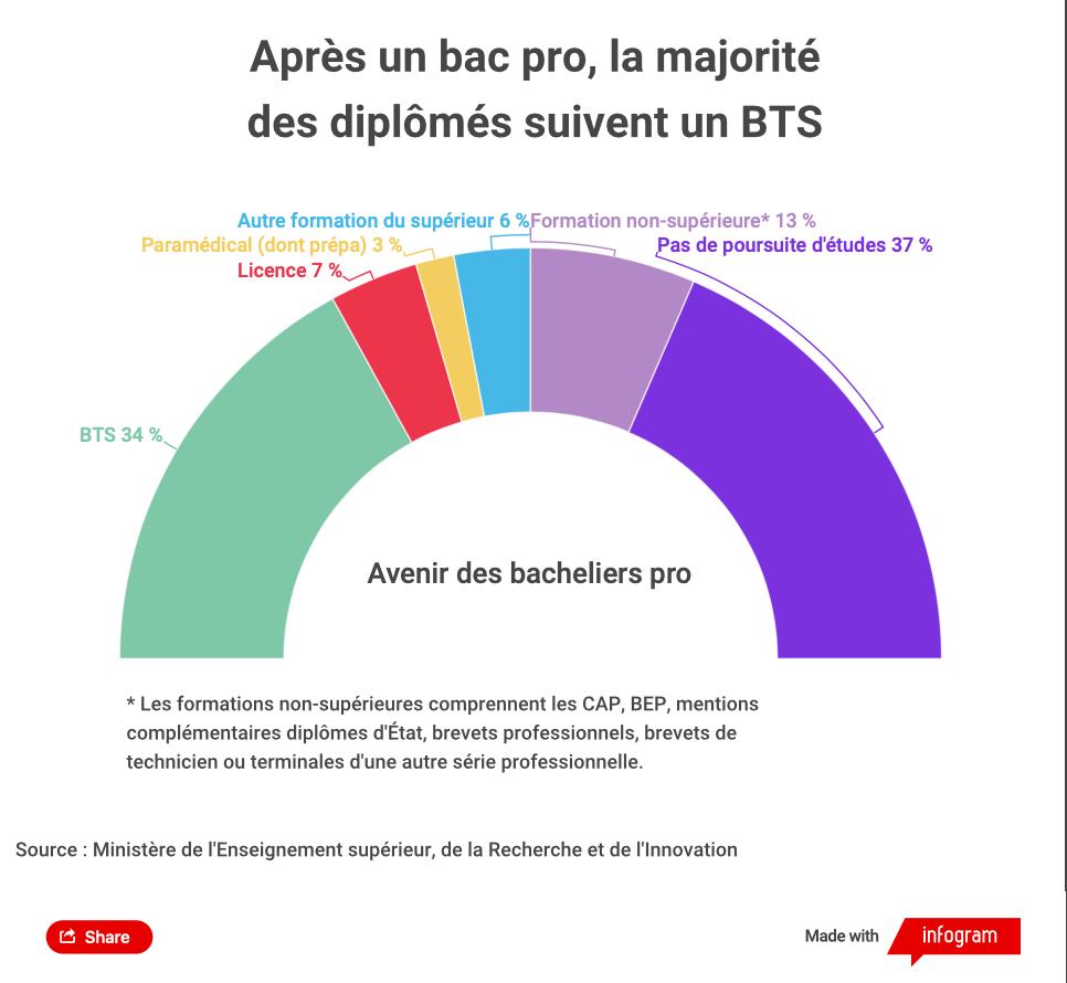 Infographie poursuite d'étude des bacheliers professionnels.